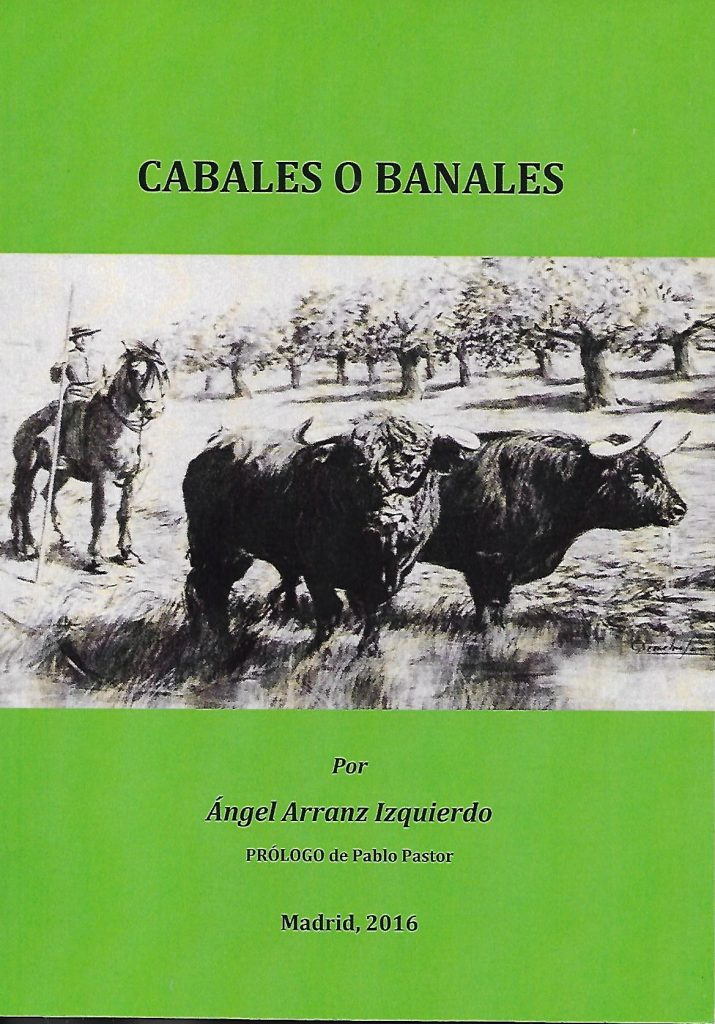 Ángel Arranz Izquierdo